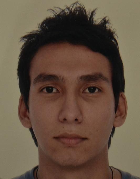 Miguel Angel Ulloa Suarez