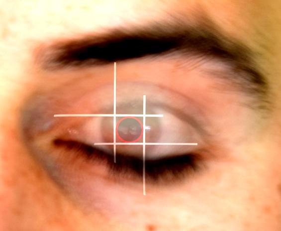 Projektbild